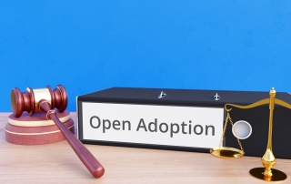 what is open adoption